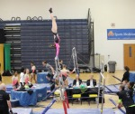 bars shamrock invite